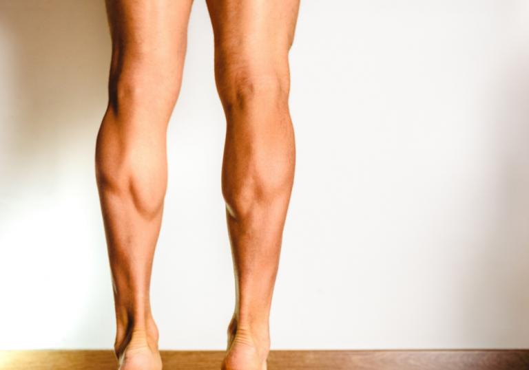 defined calves
